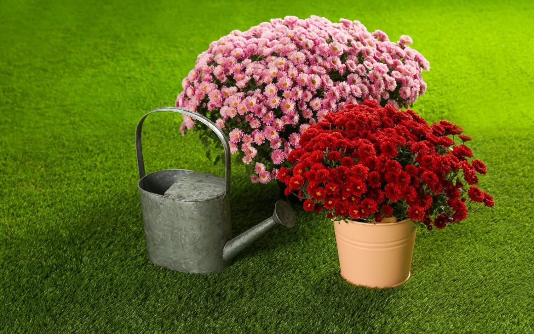 bucket of flowers on artificial turf